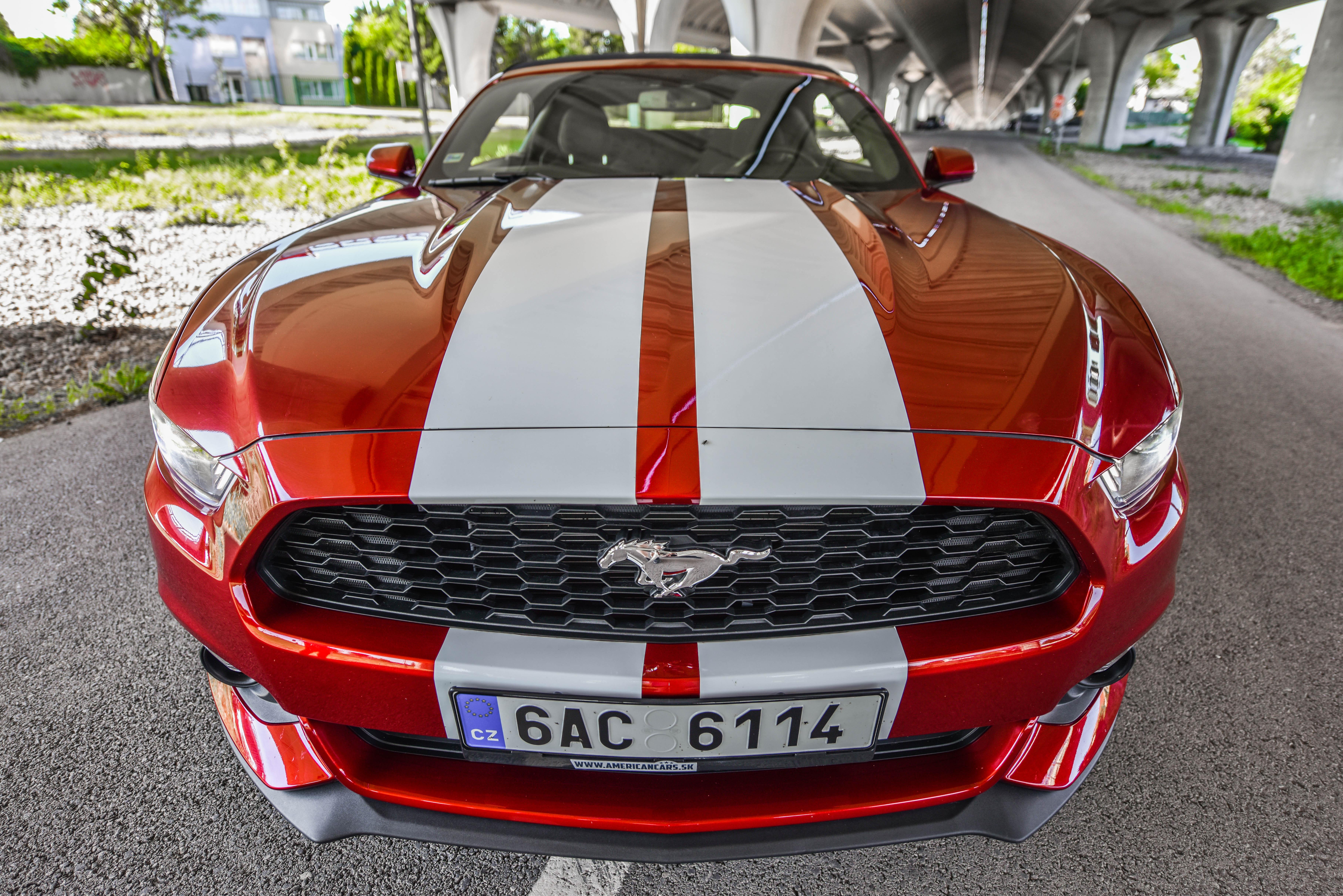 Požičovňa Cabrio Mustang