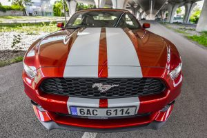 Požičaj Mustang